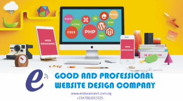 PROFESSIONAL WEBSITE DESIGN COMPANY in ibadab